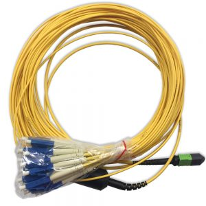 Fiber Optic Trunk Cables